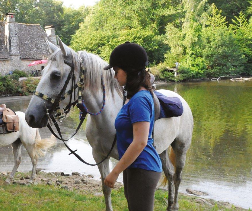 Randonnées à cheval Dordogne et Corrèze