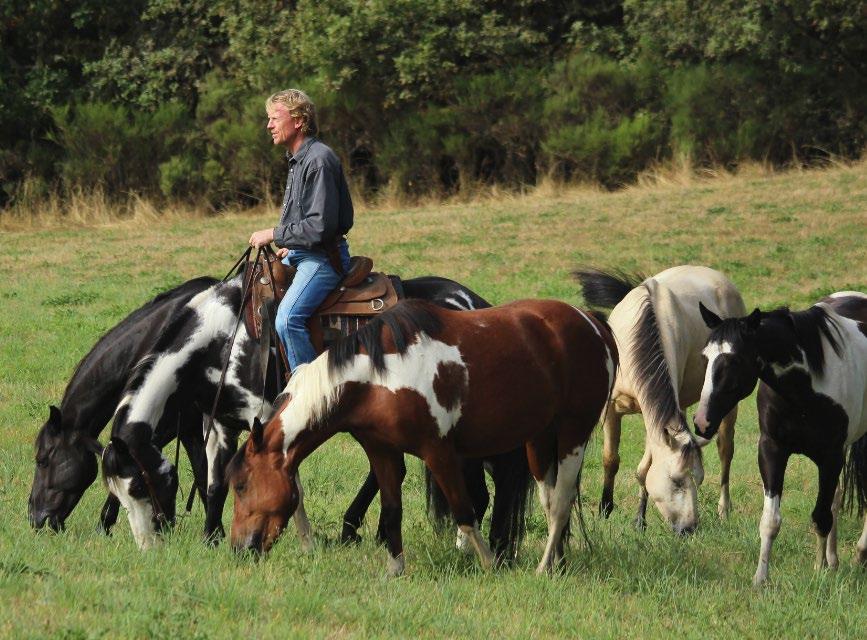 Séjours équestre corrèze adolescents