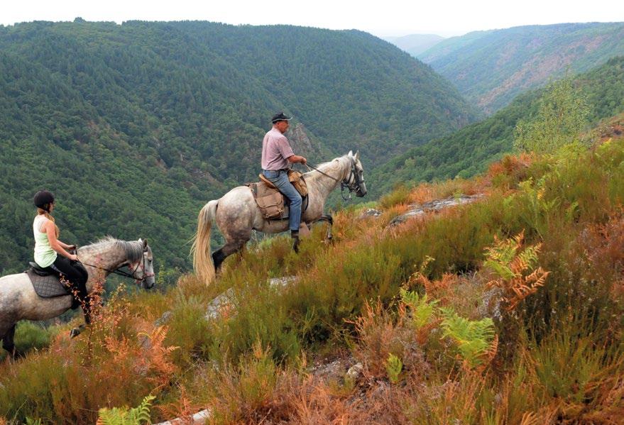 Promenade à cheval corrèze