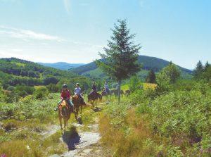 randonnée equestre corrèze