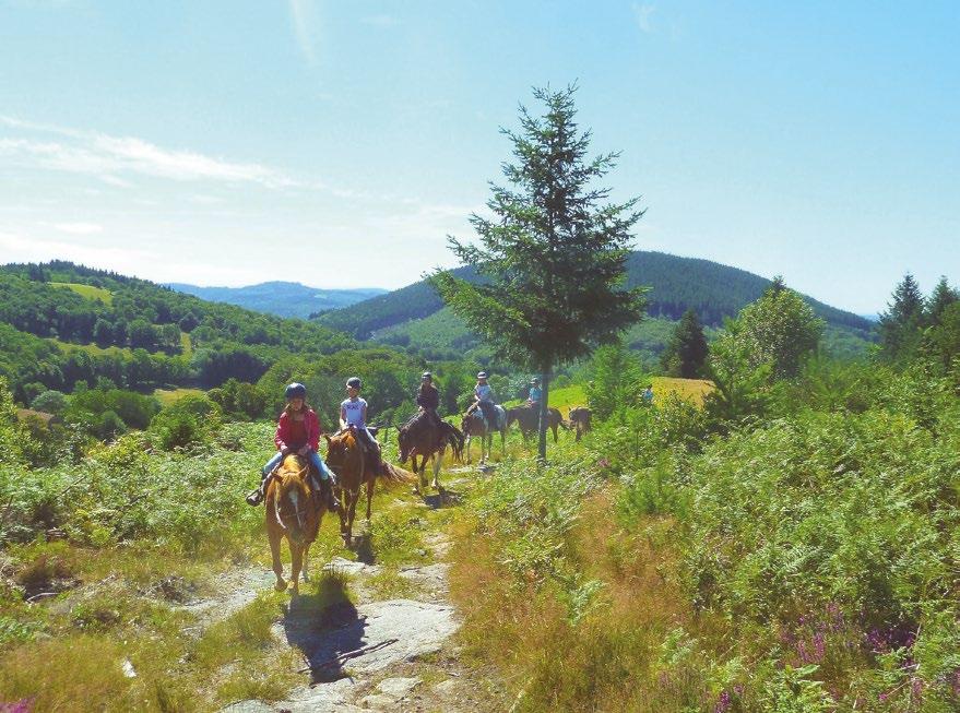 Vacance cheval corrèze
